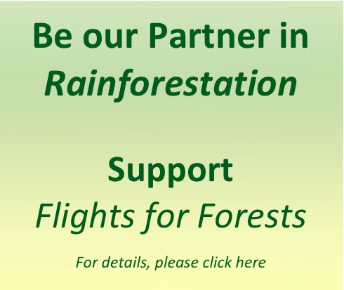 Flights for Forest